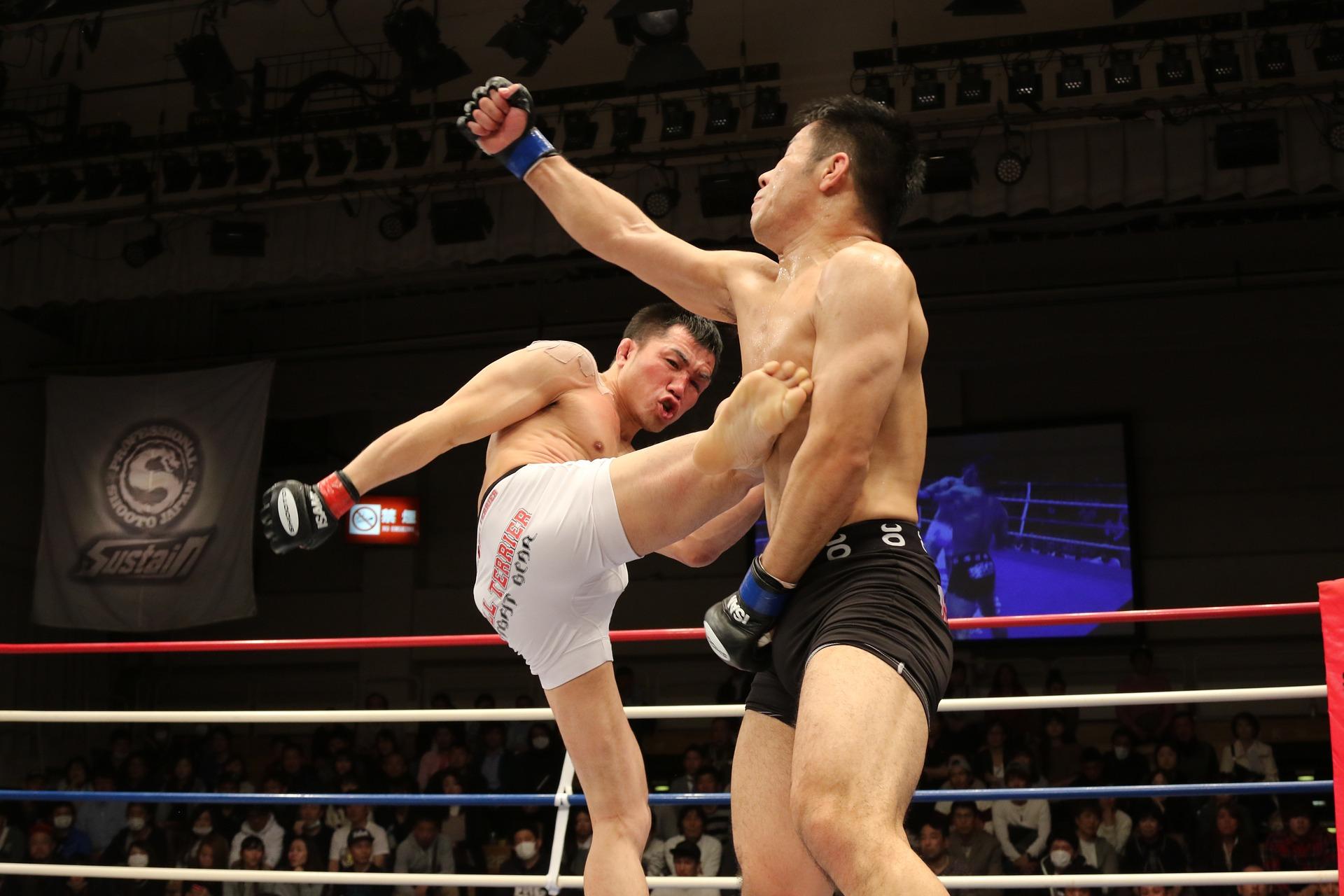 jogadores de boxe em meio de luta